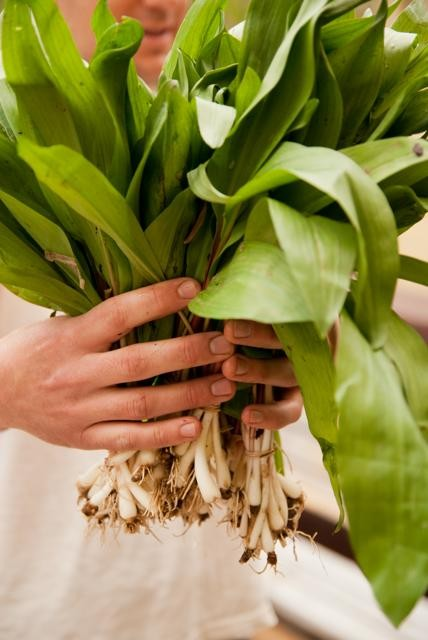 Redolent: Call them what you will, but the full flavor of ramps is sure to add some oomph to any dish. Max Cooper