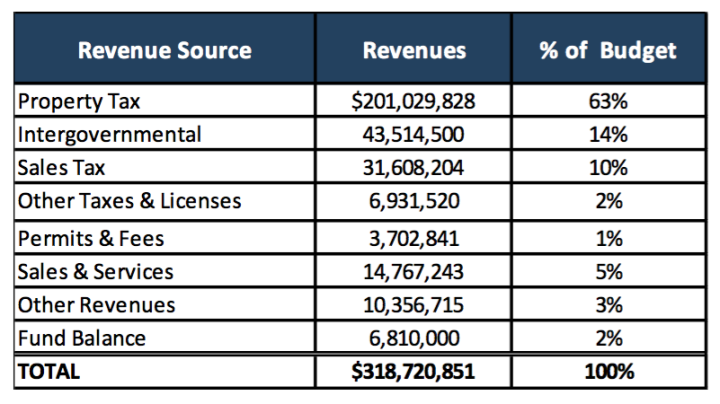 SOURCE OF POWER: A breakdown of the source of county revenue for fiscal year 2019. Image courtesy of Buncombe County
